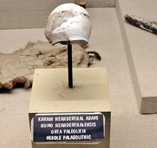 Antalya Neanderthal