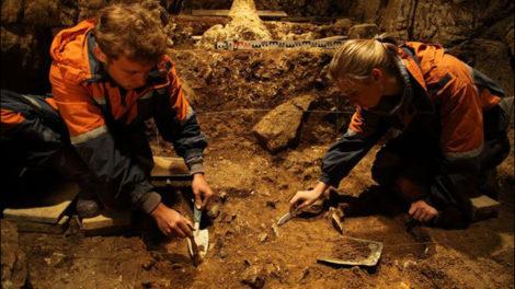 inside-den-cave