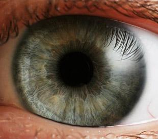eye_camera2_photo