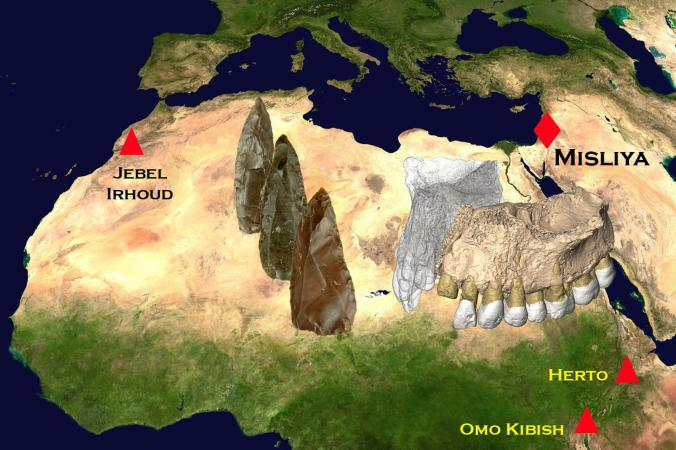 En erken modern insan fosillerinin bulunduğu noktalar