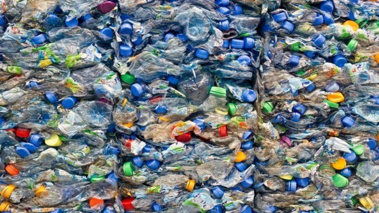 bilim-insanlari-yanlislikla-plastik-yiyen-bir-enzim-yaratti-768×432