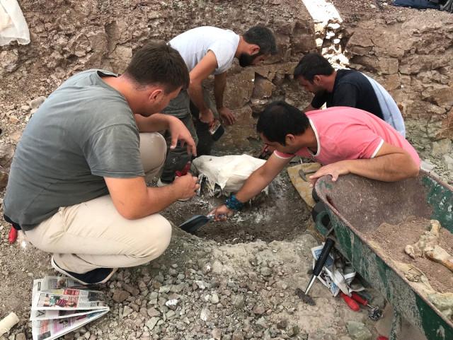 Çankırı'da 8,5 Milyon Yıllık Fosil
