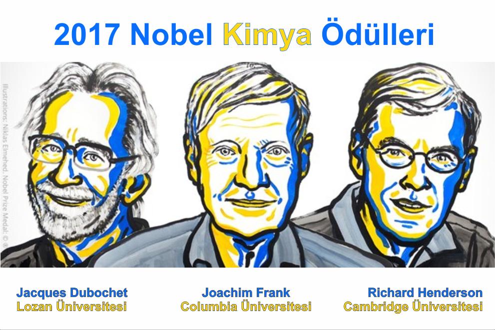 nobel kimya