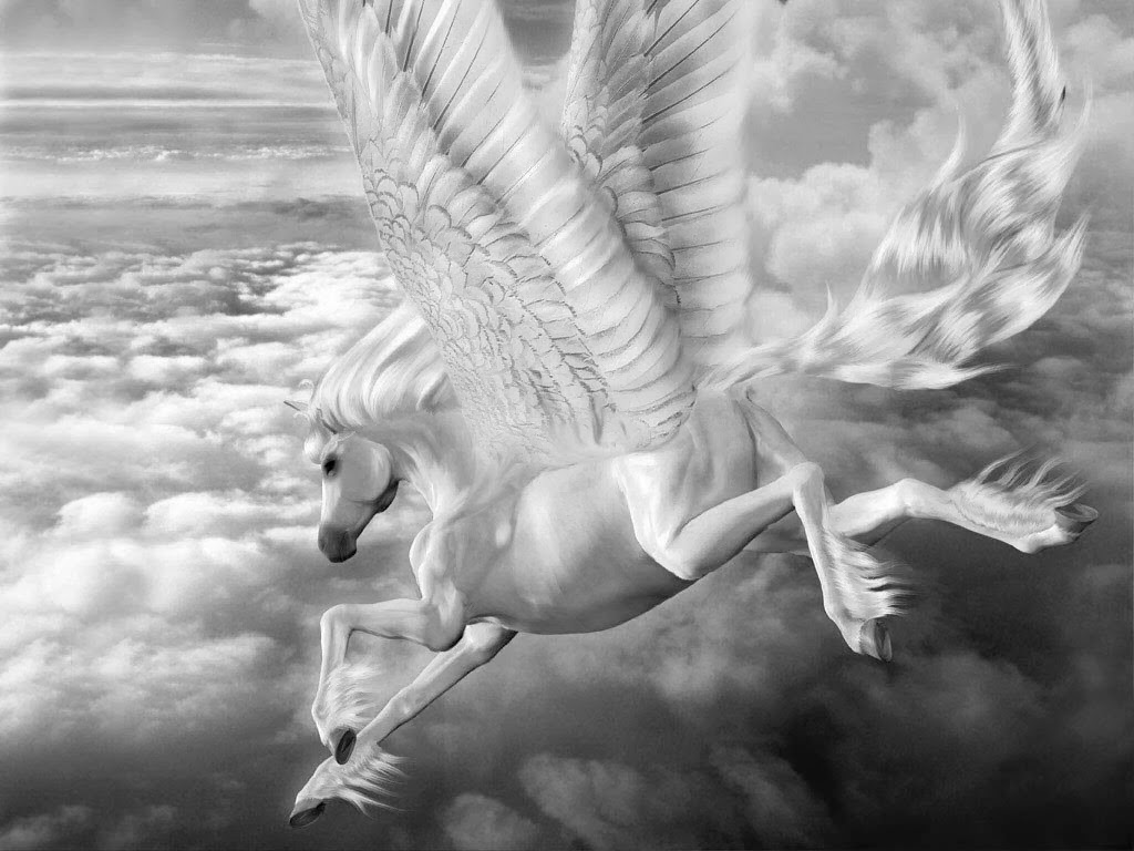 Fantasy-Pictures-with-black-and-white-Pegasus-Horse-with-wings